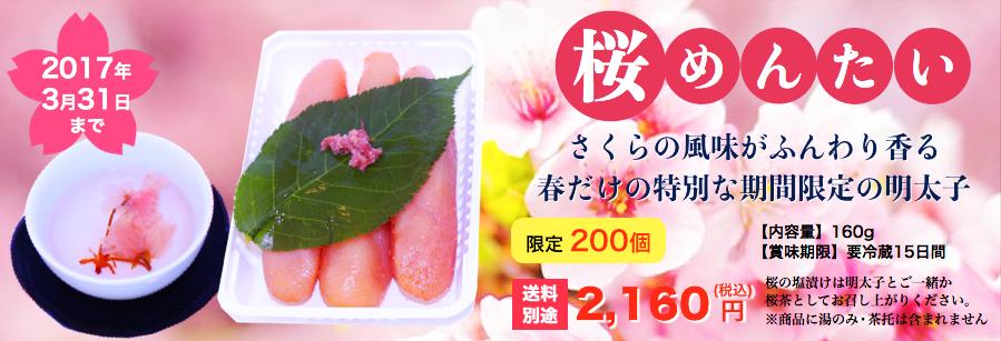 桜めんたい